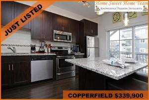 227 Copperpond Cm SE